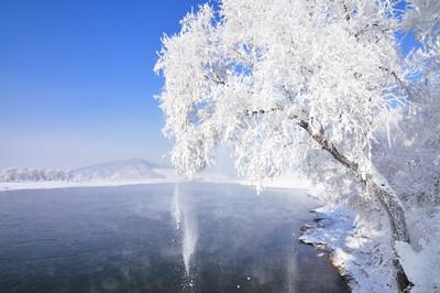 【哈尔滨】哈尔滨、亚布力、雪乡双飞6日游