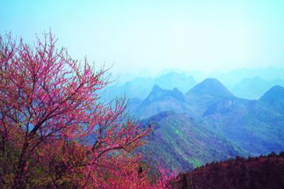 【河南】河南尧山赏红叶、福泉温泉二日游